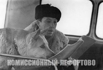Юрий Никулин (лейтенант милиции Глазычев) и овчарка «Гек» (Мухтар) во время съёмок фильма «Ко мне, Мухтар» фотография Б. Виленкина 1964 год.