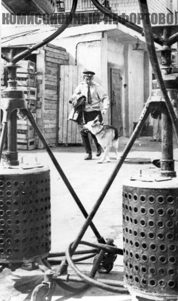 На съёмочной площадке фильма «Ко мне, Мухтар» младший лейтенант милиции Глазычев (Юрий Никулин) и Мухтар (Дейк), фотография 1964 год.