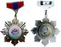 медаль 30 лет городу Эрдэнэт, Монголия 1976-2006