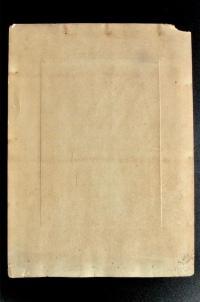 Толстой Лев Николаевич фотопортрет с натуры. Прокудин-Горский 1908 год.
