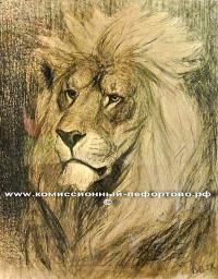 карандашный рисунок лев русский и советский график и скульптор-анималист Ватагин Василий Алексеевич